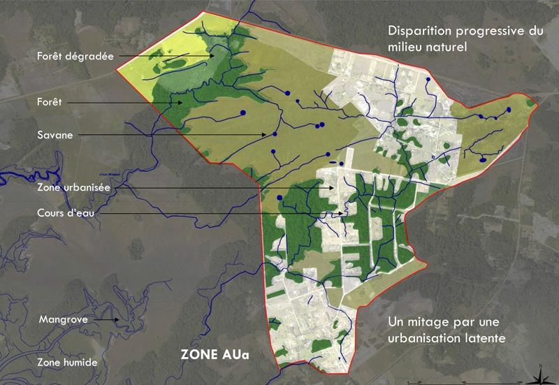 DU_Etude urbaine a Montsinery La Carapa_mitage du milieu naturel