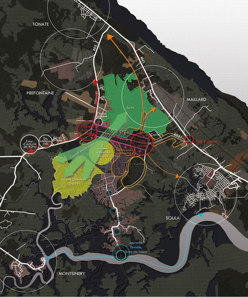 DU_Savane Marivat Champs Virgile La Carapa Etude urbaine a Montsinery en Guyane_plan stratégique