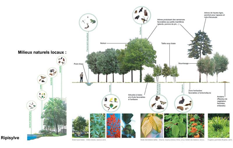 DU_Les Mureaux Etude urbaine_milieux naturels