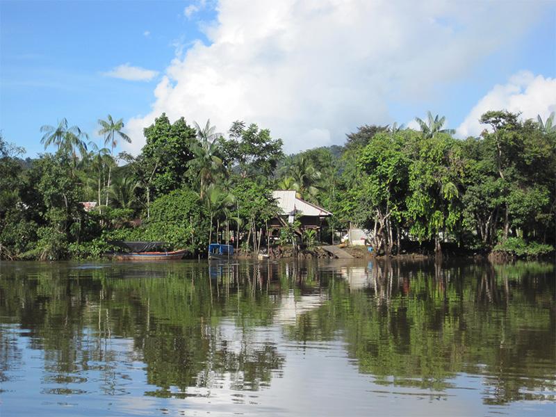 Montsinery Maitrise d'oeuvre urbaine en Guyance_une forte presence de l'eau